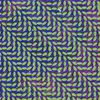 Animal Collective.Merriweather