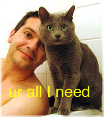 Cat_ur_all_i_need_2